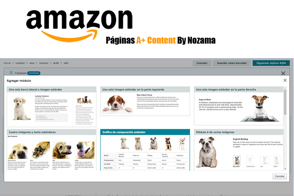 Référencement SEO sur Amazon
