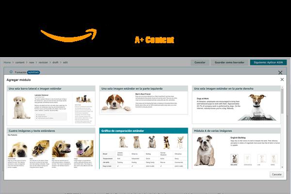 Paginas A+ Amazon