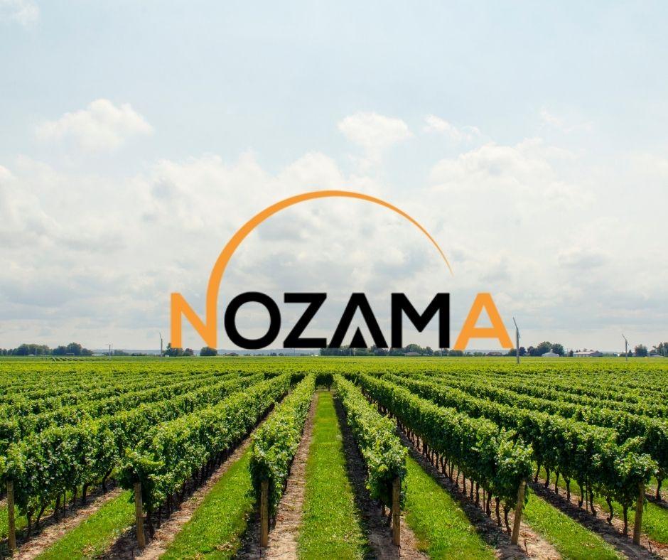 Nozama Wines